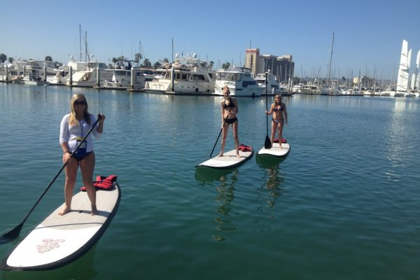 LARGE_paddle-board-thirteen